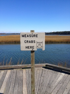 I really liked the look of this sign with the scenery in the background; it seemed very Eastern Shore to me. (Vanessa Junkin photo)