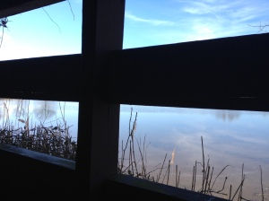 I captured this unique view from what I believe was a duck blind at the Terrapin Nature Area. (Vanessa Junkin photo)