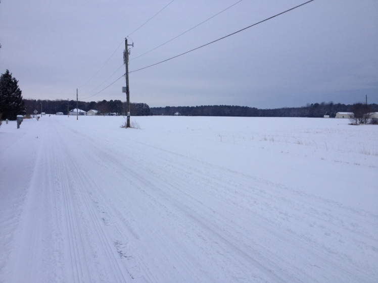A shot from my snow run the morning of Tuesday, Feb. 17. (Vanessa Junkin photo)
