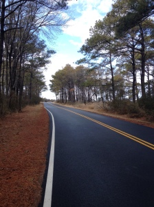 I liked the look of this side road I took during my run. (Vanessa Junkin photo)