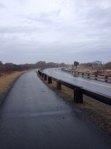 Here's what the paved trail looks like, going from inside the Assateague Island National Seashore to the visitor center. (Vanessa Junkin photo)