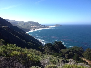 Here's a shot of some of the scenery from the course of the Big Sur International Marathon. (Vanessa Junkin photo)