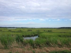 I enjoyed the views along the course. (Vanessa Junkin photo)