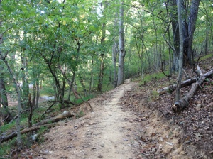 Here's another shot from the Seneca Creek Greenway Trail. (Vanessa Junkin photo)