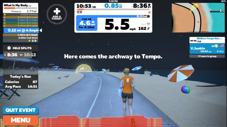 Hate running on the treadmill? Try Zwift – She Runs by the Seashore