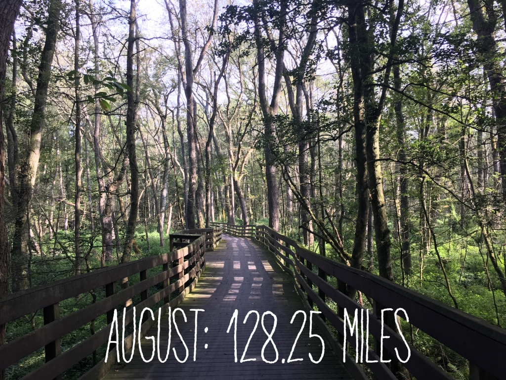 "Photo says ""August: 128.28 Miles"" over a view of a boardwalk-like section in the woods at Trap Pond State Park."