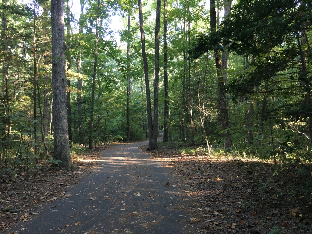 A view of a paved trail at Deep Run Park with plenty of trees.