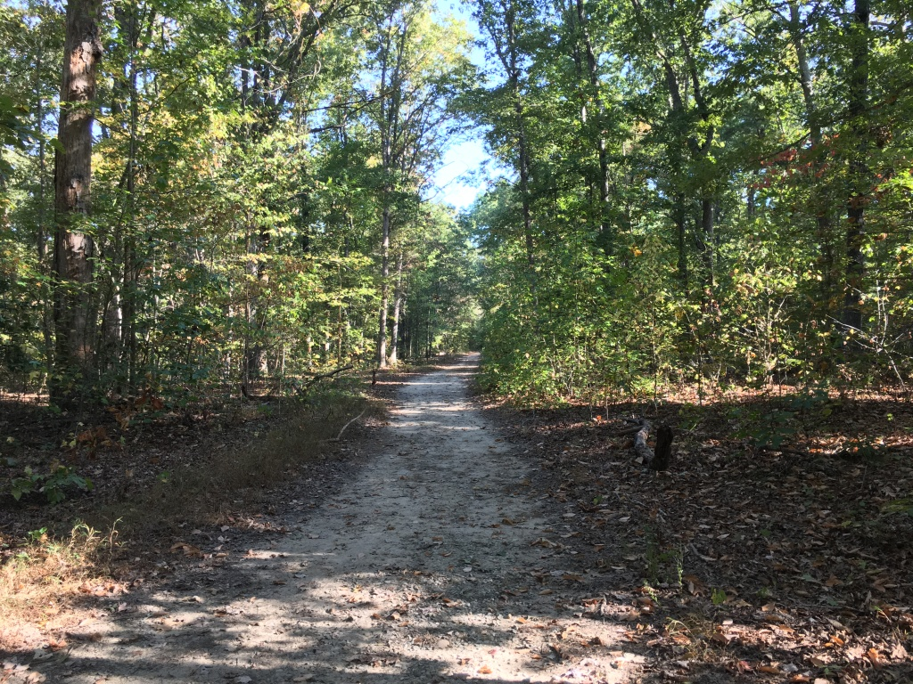 Powhatan State Park unpaved trail with plenty of trees surrounding it.