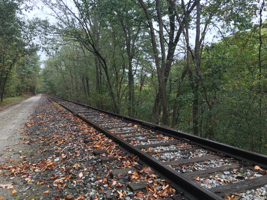 Railroad tracks next to the York County Heritage Rail Trail, along with trees.