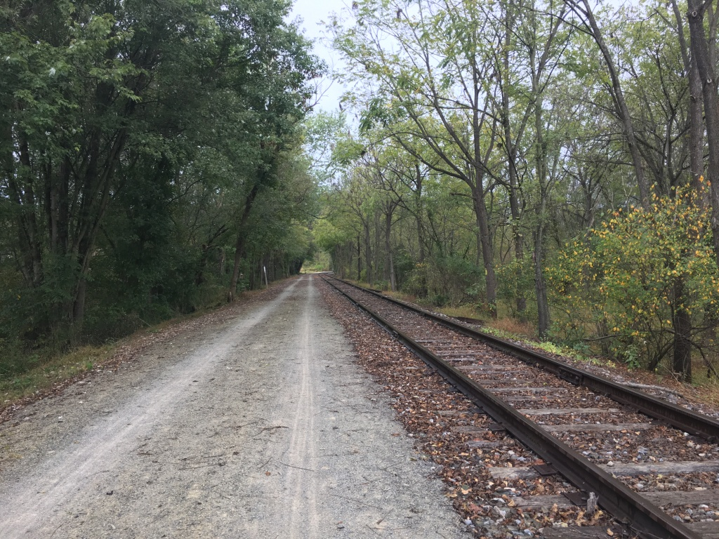 Another view of the York County Heritage Rail Trail, with railroad tracks on the right and trees on both sides.