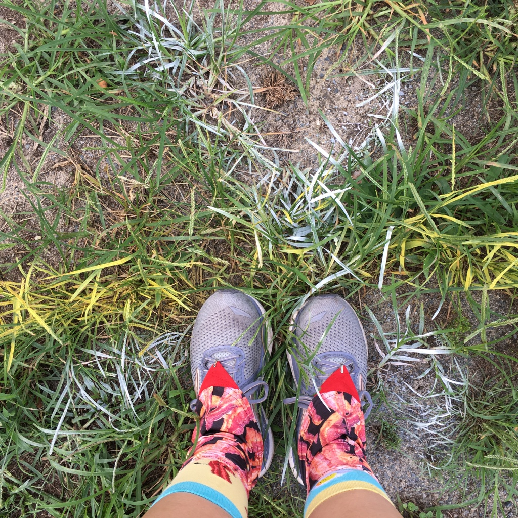 Running shoes with bacon gaiters standing on a white spray-painted X marked on a yellow spray-painted line.