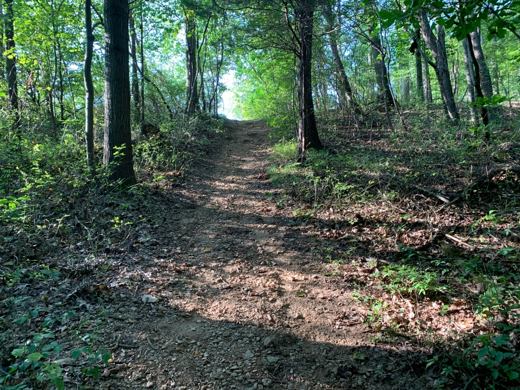 Uphill trail shown among trees.