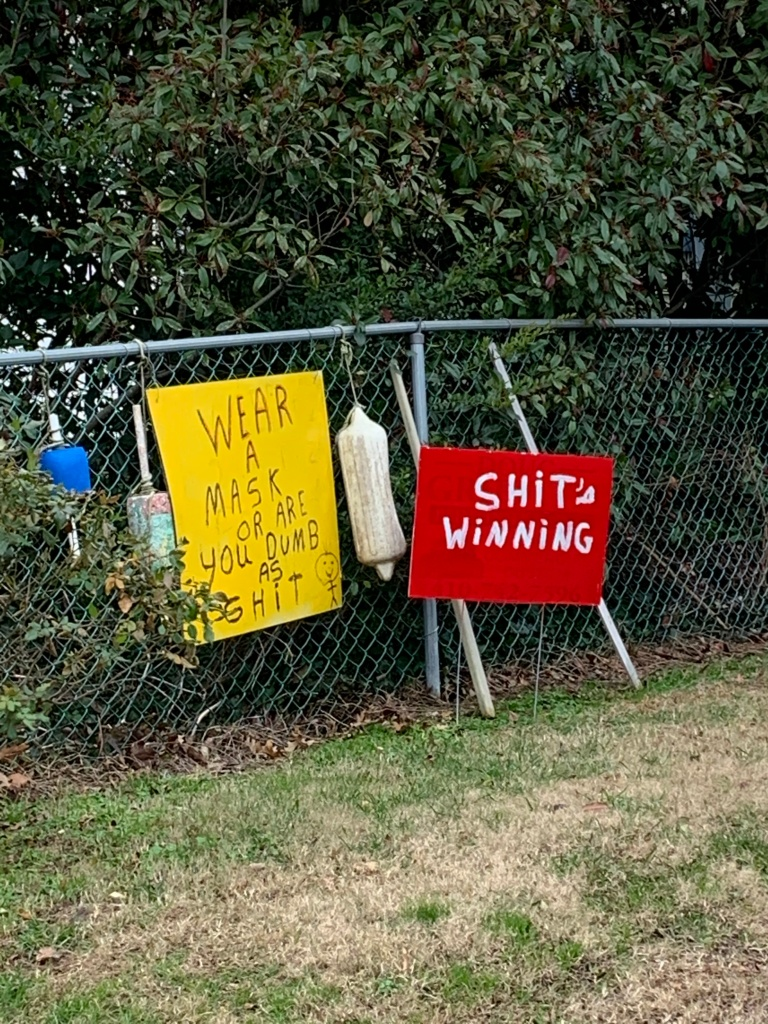 "A yellow sign that says ""Wear a mask or are you dumb as shit"" with a red sign next to it that says ""shit's winning."""