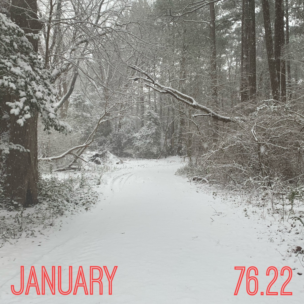 "Photo of snowy path through snow-covered trees with the dark pink text ""January"" and ""76.22."""