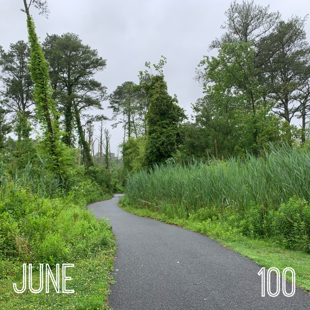 """Photo of paved path through greenery and trees with text reading """"June"""" and """"100."""""""
