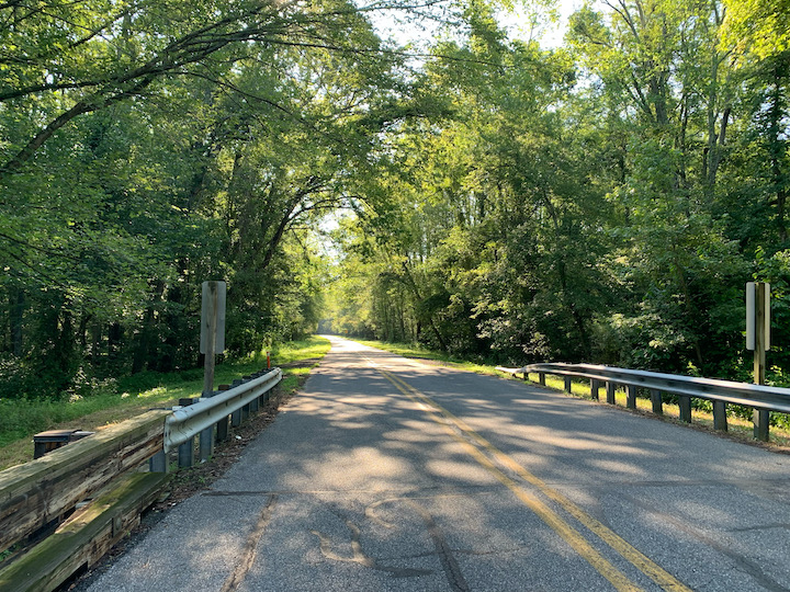 Rural road with trees on both sides.