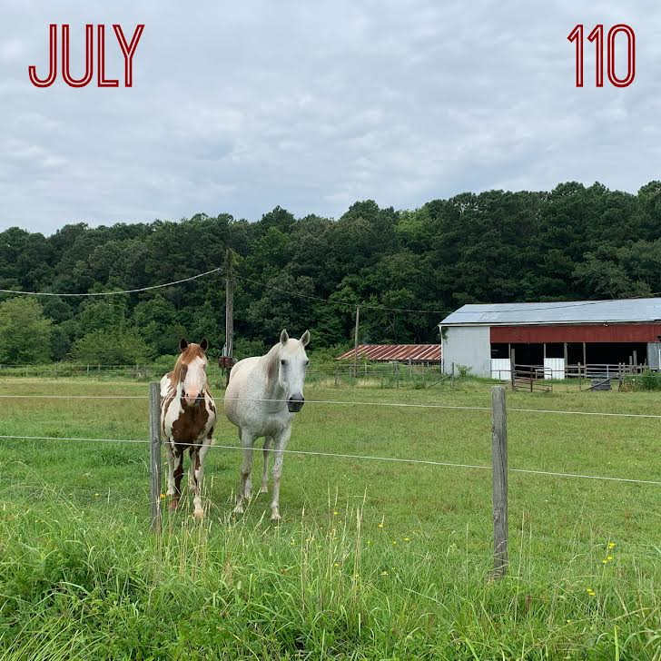 """Photo of horses at a farm with text reading """"July"""" and """"110."""""""